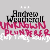 Andrew Weatherall - Unknown Plunderer