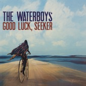 The Waterboys - The Soul Singer (single)