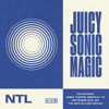 The National - Juicy Sonic Magic, Live in Berkeley, September 24-25, 2018  artwork