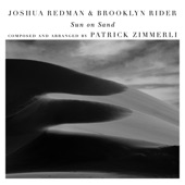 Joshua Redman - Dark White (with Scott Colley & Satoshi Takeishi)
