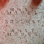 What Moves (Soulwax Remix) - Single