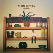 Slow Leaves - Sink Full of Dishes