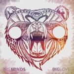 Irie Minds - Midnight Lover