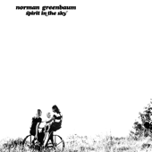 Download Spirit In the Sky - Norman Greenbaum Mp3 free