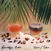 Porridge Radio - Give / Take
