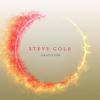 Steve Cole - Gratitude  artwork