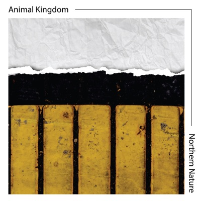 Northern Nature - Single - Animal Kingdom