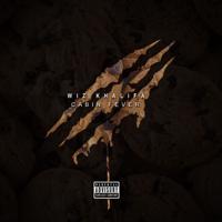 Wiz Khalifa - Cabin Fever 3