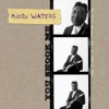 You Shook Me: The Chess Masters, Vol. 3 (1958 to 1963), Muddy Waters