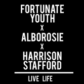 Live Life (feat. Alborosie & Harrison Stafford)