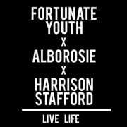 Live Life (feat. Alborosie & Harrison Stafford) - Fortunate Youth - Fortunate Youth