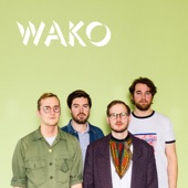 Wako - Everything Comes To an End (feat. Sissel Vera Pettersen)