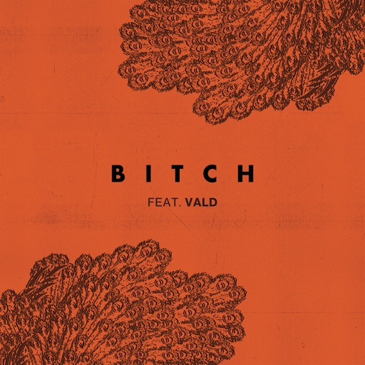 Bitch (feat. Vald) - Single