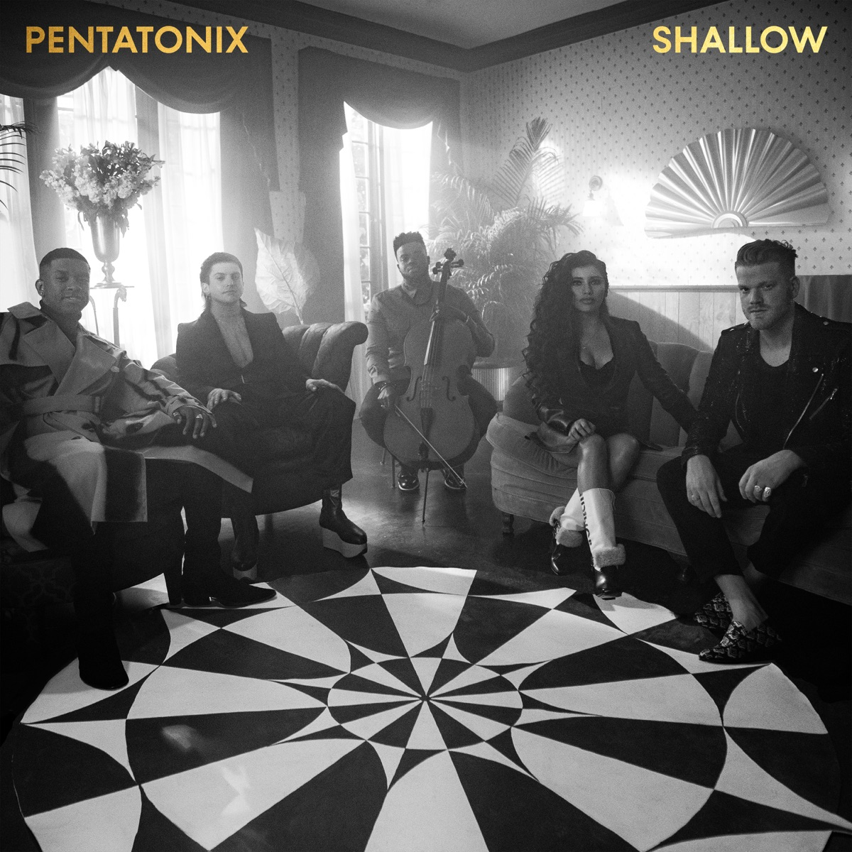 Pentatonix Christmas Cd 2019.Shallow Single Album Cover By Pentatonix