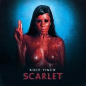 Rosy Finch - Amaranto