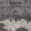 Burzum - The Sacred Well artwork