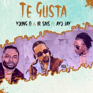 Young D, Ir-Sais & Ayo Jay - Te Gusta