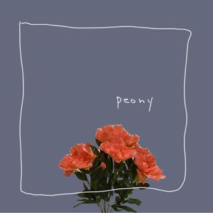 POLY - peony