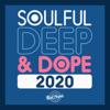 Zo! - Steal My Joy (feat. Tamisha Waden) [Opolopo Remix] bild