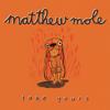 Matthew Mole - Take Yours artwork