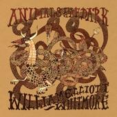 William Elliott Whitmore - Lifetime Underground