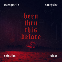 Been Thru This Before (feat. Giggs, SAINt JHN)-Marshmello & Southside