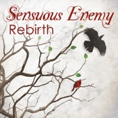 Sensuous Enemy - Paradox