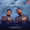 Teriyan Gallan Single