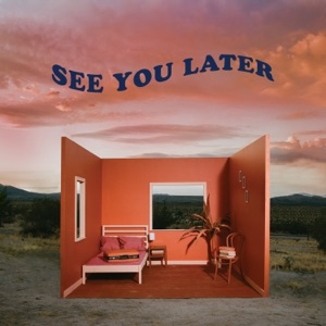 See You Later - Single