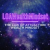 The Law of Attraction Wealth Show