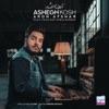 Ashegh Kosh - Single