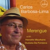 Carlos Barbosa Lima - Danza del Altiplano