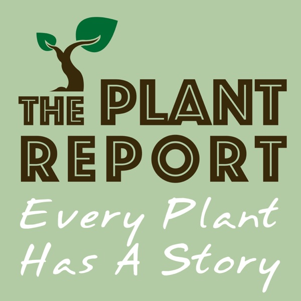 The Plant Report- Every Plant Has A Story