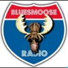 Blues Music (Blues moose radio)