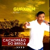 Boate Azul by Cachorrão do Brega iTunes Track 2