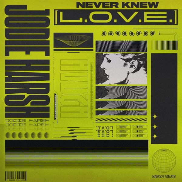 Jodie Harsh - Never Knew (L.O.V.E.)