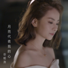 Vivian Koo - The Moon Represents My Heart (Interlude from TV Drama