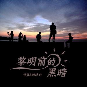 郝琪力 & 书岩 - 黎明前的黑暗 (Dj奶小深Remix版)