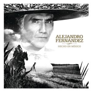 Alejandro Fernández - Decepciones
