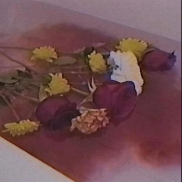 Hay Flores Flotando en el Agua - Single