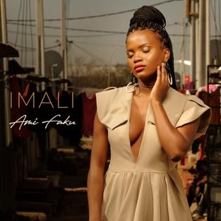 Ami Faku – Imali [iTunes Plus AAC M4A]