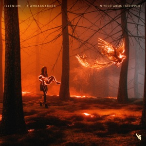 Illenium & X Ambassadors - In Your Arms