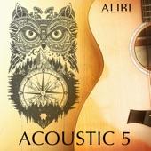 Alibi Music - Shellbark Hickory
