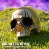 Problems Remix feat 24kGoldn Single