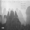 Radical Invisibility - Radical Invisibility (feat. Daniel Carter, Stelios Mihas, Irma Nejando & Federico Ughi) artwork