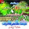 Hum To Bus Sarkar Kay Khadim Hain