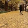 或る秋の日 by 佐野元春