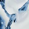 Wow. (Remix) [feat. Roddy Ricch & Tyga] - Post Malone