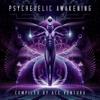 Ace Ventura - Psychedelic Awakening artwork