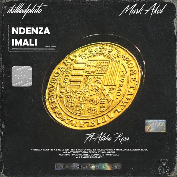 Ndenza Imali (feat. Ikilledpluto & Alisha Rosa) - Single
